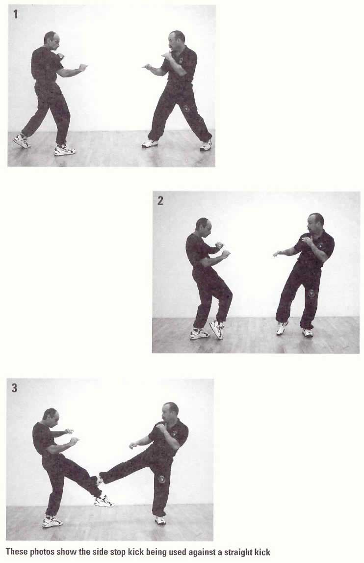 Jeet kune do kicks